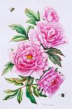 ''Розовые пионы''. Ярмиш Мария. Ботаническая живопись