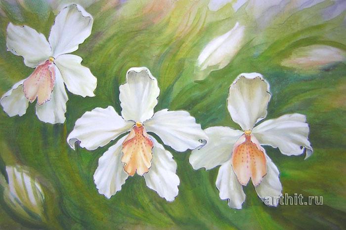 ''Орхидеи''.  Виницкая Лариса. Продажа картин, предметов декоративно-прикладного искусства