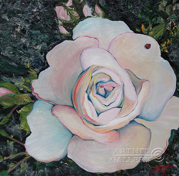 'Tenderness of a rose'. Pavlovich Anna