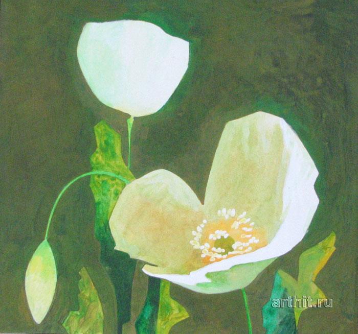 'White poppies'. Sobolevsky Mikhail
