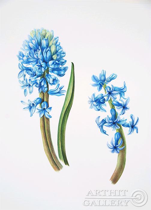 ''Синие гиацинты''.  Ярмиш Мария. Продажа картин, предметов декоративно-прикладного искусства