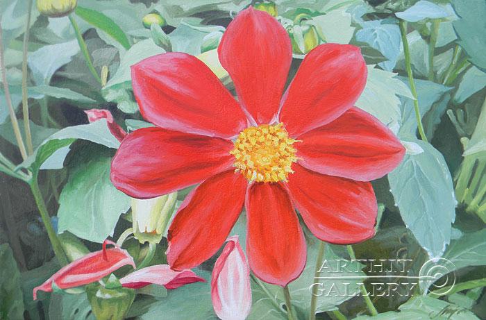 'Red dahlia'. Morozov Anatoliy