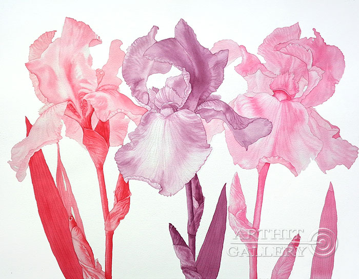 ''Розовые сны''.  Калиберда Елена. Продажа картин, предметов декоративно-прикладного искусства