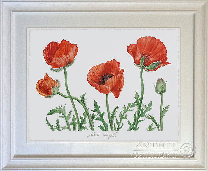 'Poppies'  by Kaliberda Elena