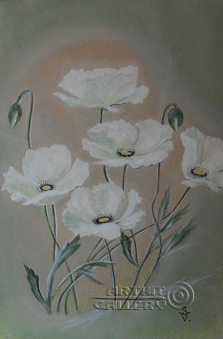 'White poppies'. Anashkina Svetlana